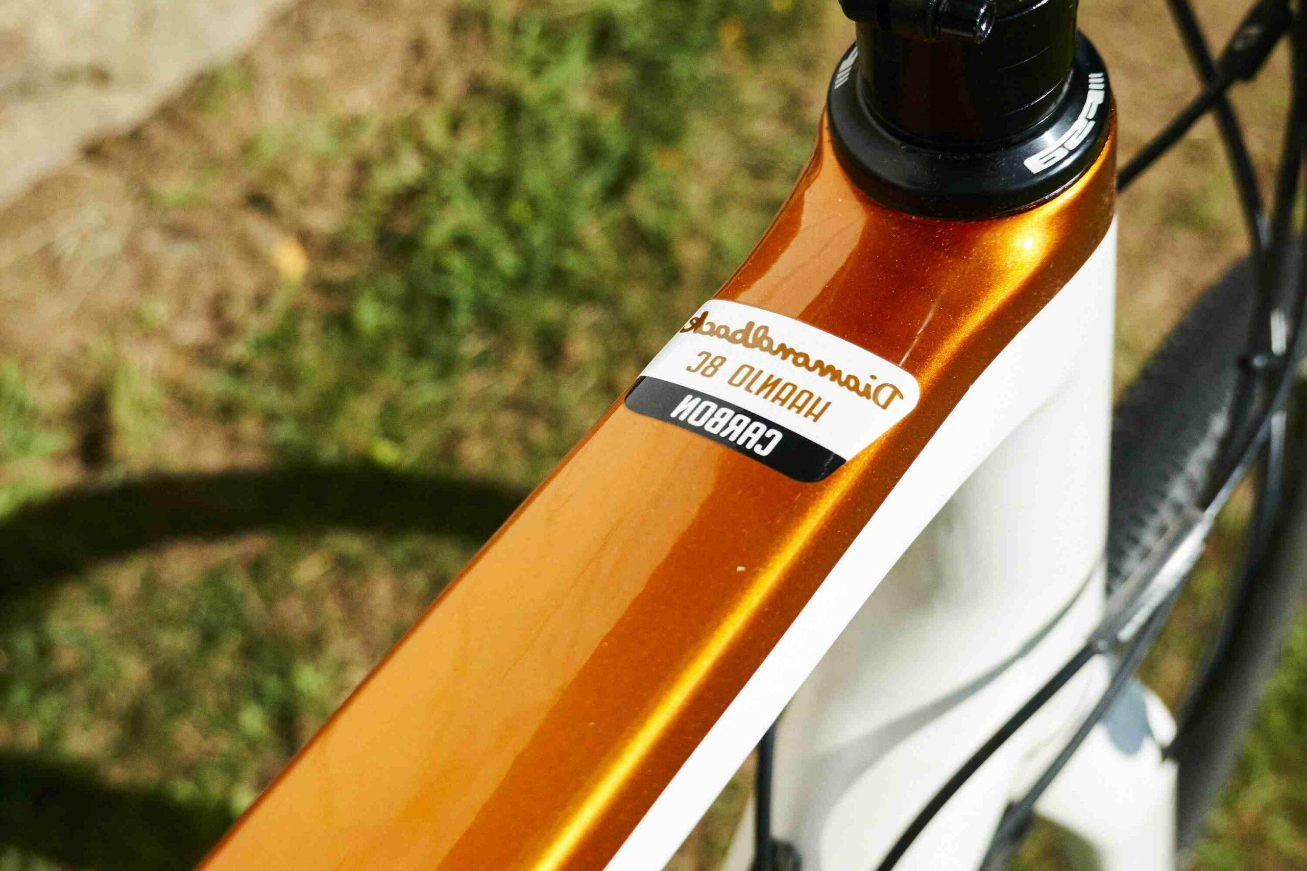 Quel est le vélo le plus polyvalent ?