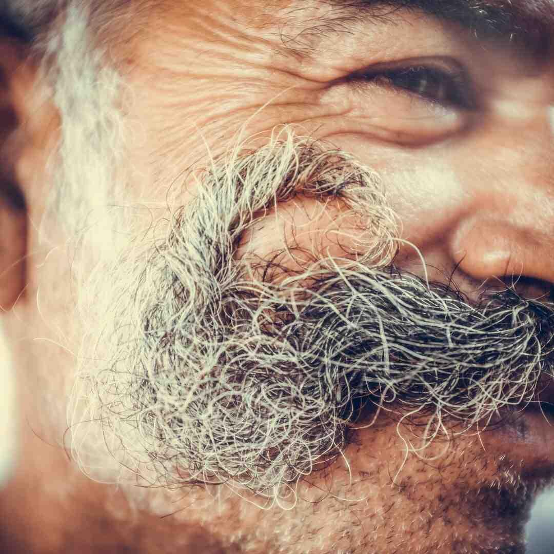 Quel sabot pour barbe de 10 jours ?